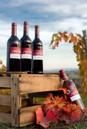 Rotwein und Rosewein